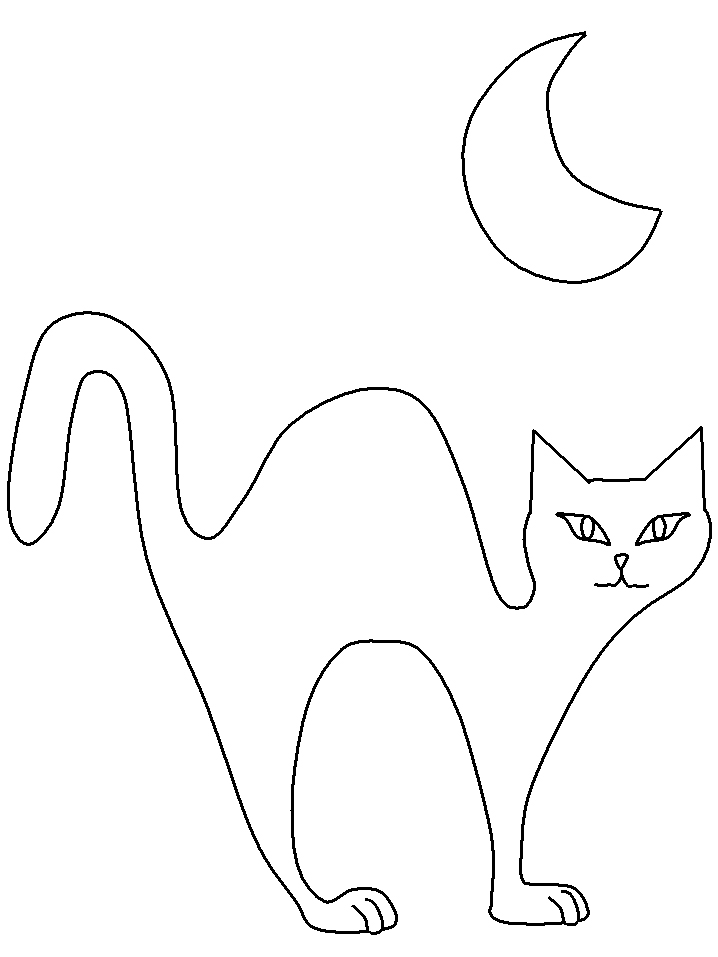 Plansa de colorat cu o pisica in miez de noapte
