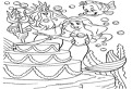 Ariel taie tortul