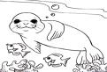 Plansa de colorat cu o foca si doi pesti