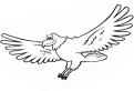 Plansa de colorat cu un vultur