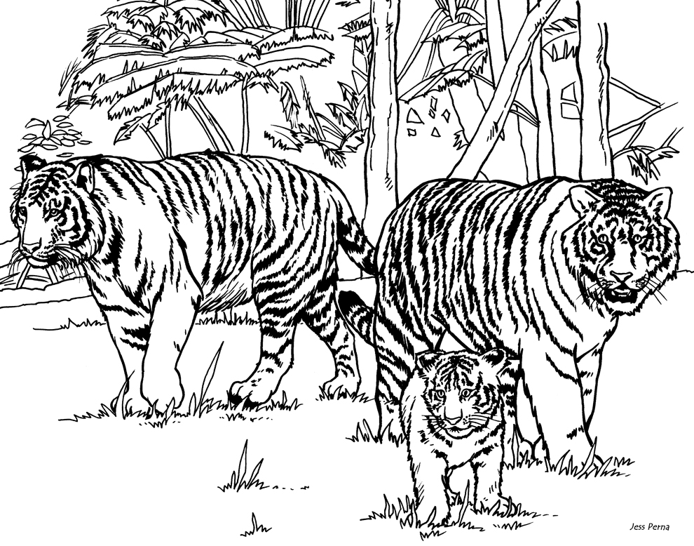 coloring pages 8x11 coloring pages