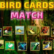 Birds Card Match